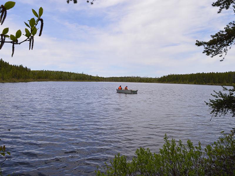 lac-truite-mouchetee